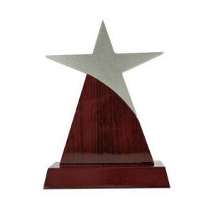 Звезда (25 см)