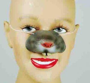 Нос мышки