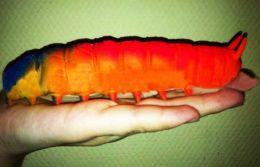 Гусеница растущая (14 см)